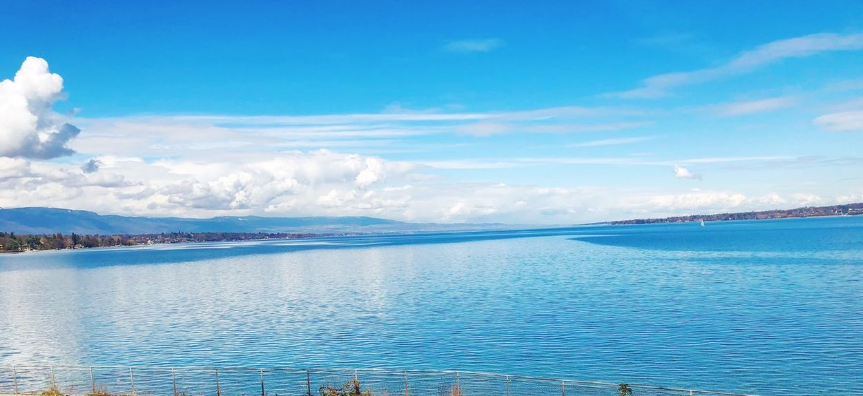 Lakeside EyeEm Selects Water Sky Cloud - Sky Scenics - Nature Beauty In Nature Tranquil Scene Tranquility Waterfront Blue Idyllic Nature