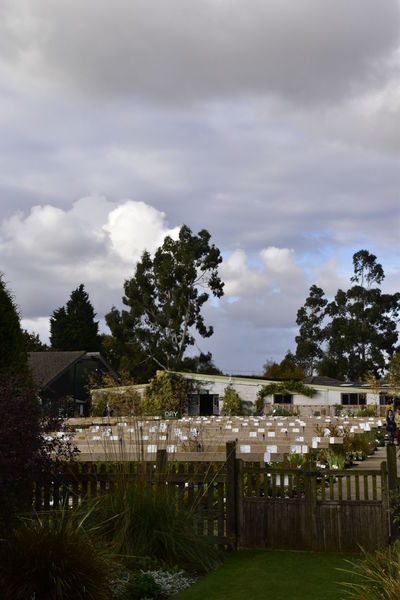 Beth Chato Gardens Cloud - Sky Day Elmstead Market Essex Nature No People Nursery Outdoors Sky Tree Vertical Water