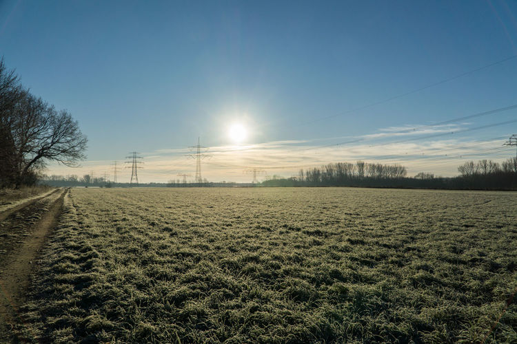 Frosty morning in Berlin Buch - Frozen field in the morning sunlight. Agriculture Beauty In Nature Day Field Landscape Nature No People Outdoors Rural Scene Scenics Sky Tranquil Scene Tranquility Tree