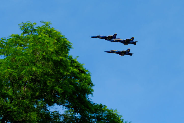 Low angle view of airshow flying against sky
