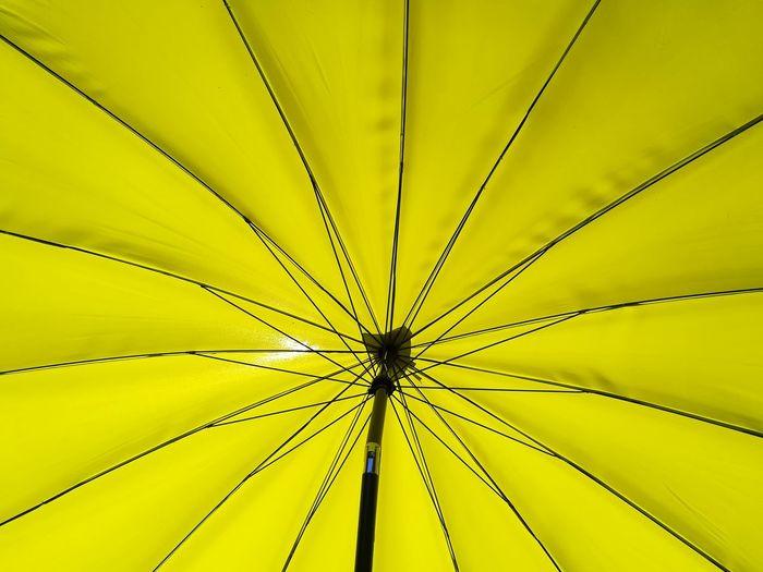 Sonnenschirm Yellow Sonnenschirm Sunprotection Sonnenschutz Backgrounds Green Umbrella Sunumbrella Backgrounds Full Frame Tree Pattern Close-up Sky Sun Lounger Beach Umbrella Thatched Roof Lounge Chair Under Parasol