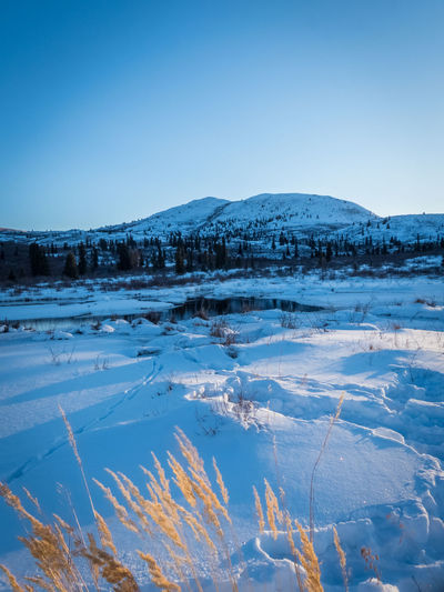 golden blue Beauty In Nature Blue Hour Blue Canada Clear Sky Cold Temperature Day Frozen Ice Lake Landscape Landscape_photography Mountain Mountain Range Nature No People Outdoors Scenics Sky Snow Tranquil Scene Tranquility Winter Winter Yukon Territory