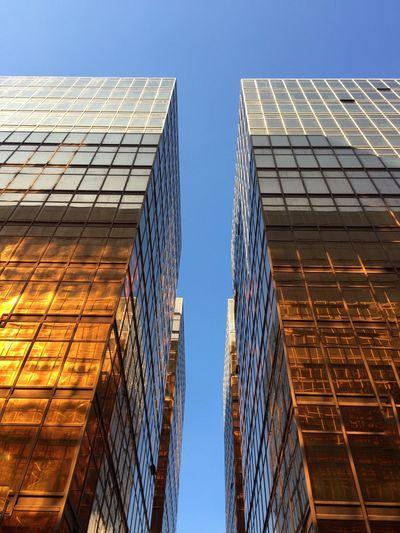 IPhoneography Architecture Fascinating Reflection Unedited Beautiful Sunshine