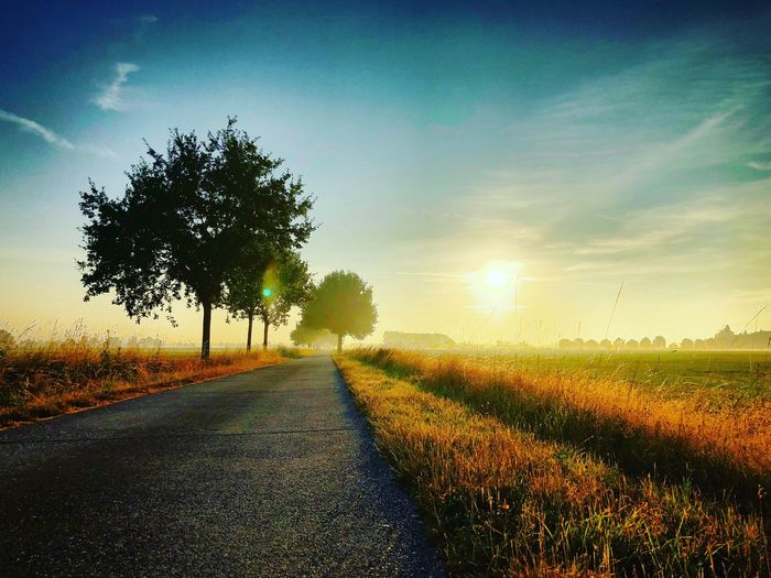 Country road sunrise Plant Sky Tree Sunset Road Beauty In Nature Nature Tranquil Scene Direction Tranquility Field The Way Forward Landscape Growth Scenics - Nature Environment Transportation Cloud - Sky Diminishing Perspective No People