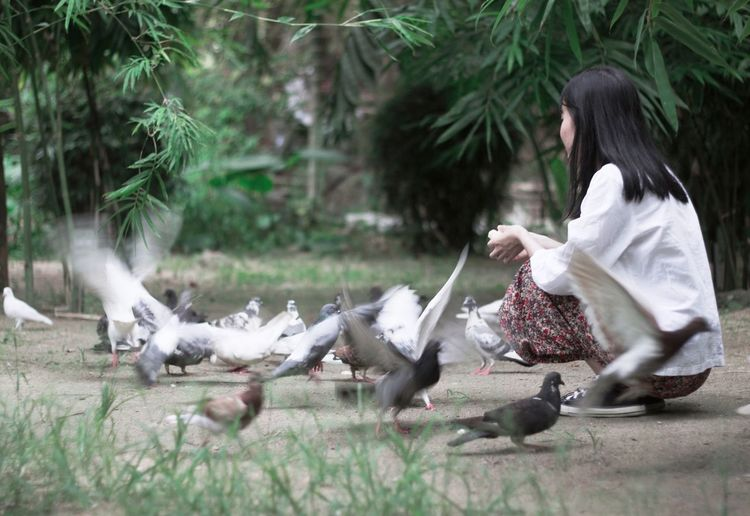 Side View Of Woman Crouching On Field By Birds
