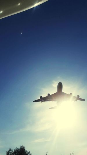 Sky Low Angle View Nature Air Vehicle Sunlight Airplane Silhouette Cloud - Sky Transportation Mode Of Transportation Outdoors Blue No People Day Sun Travel Flying Copy Space Lens Flare Sunbeam