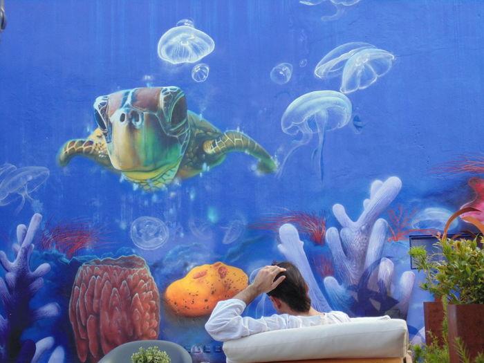 Fishes swimming in fish tank at aquarium