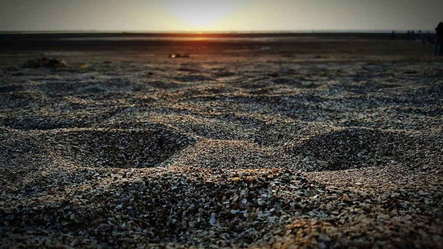 Sunset Sandy First Eyeem Photo