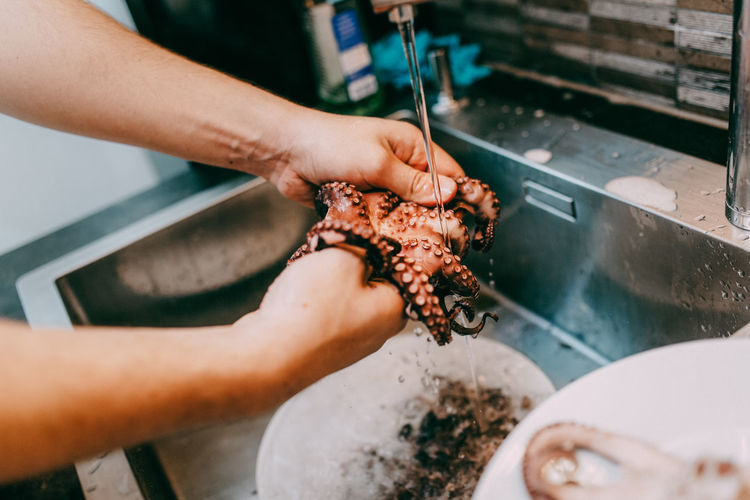 Cropped Hands Of Chef Cleaning Octopus In Kitchen Sink