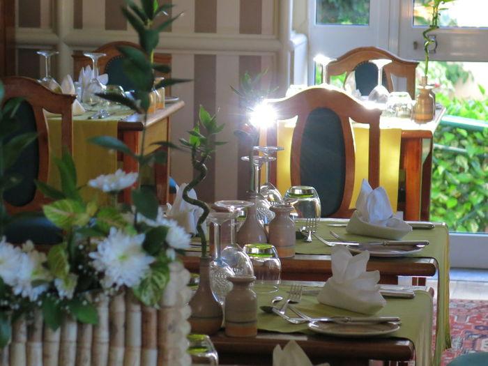 Taking Photos Enjoying Life Taking Photos Dinner Dinner Time Dinner Table Dinner Date Dinner For Two Dinnertime Dinner Is Served Dinnertable Dinner Room