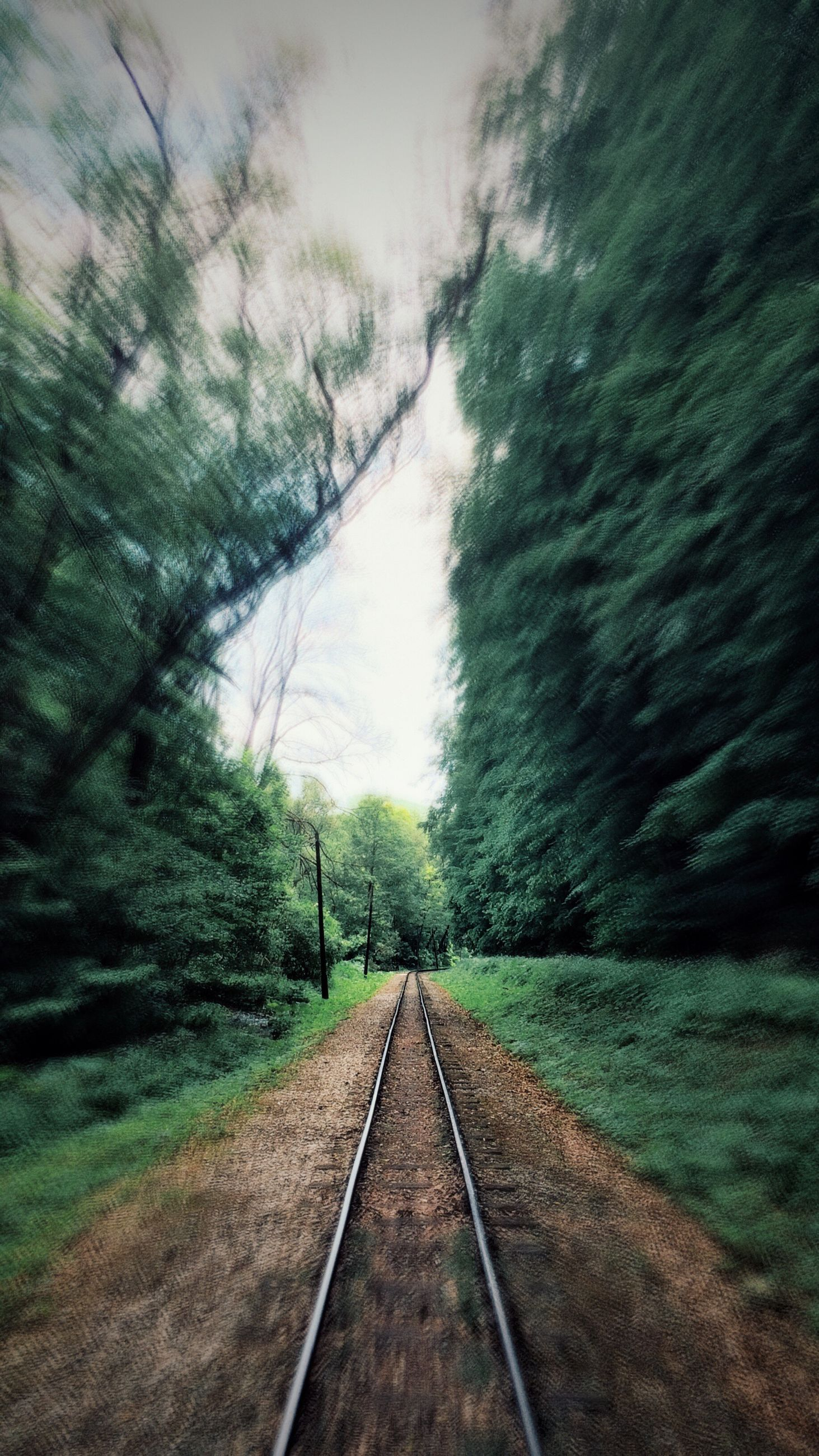 the way forward, railroad track, diminishing perspective, transportation, vanishing point, rail transportation, sky, tree, tranquility, nature, cloud - sky, water, long, railway track, tranquil scene, day, connection, outdoors, no people, growth