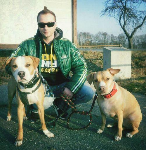 Pitbulls Cherry & Amìgo