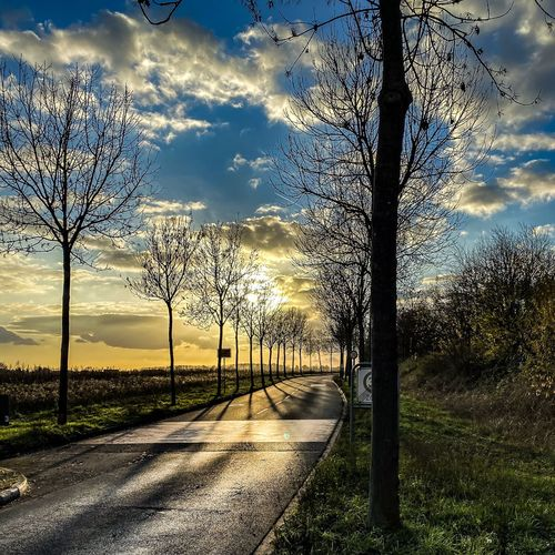Road by bare trees on field against sky at sunset
