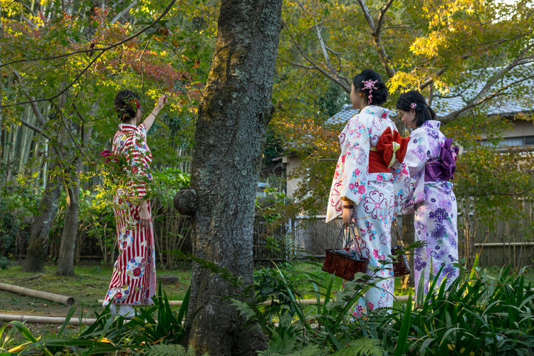 Plant Women Tree Females Togetherness Adult Standing Nature Young Adult Traditional Clothing Celebration Emotion Day Bonding Positive Emotion Outdoors Traditional Japan Japanese Culture Kimono Sagano International Women's Day 2019