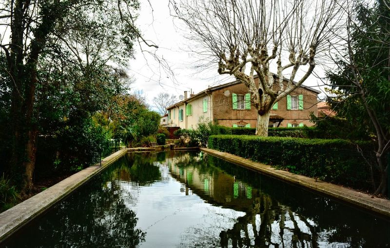 The green house.... House Green Nature France Côte D'Azur Tree Reflection