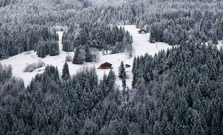 Le Grand Bornand , France Winter Snow Forest Skiing Huts Alps Alpine Mountains Traveling Travel Travel Photography Tranquility Travelling Landscapes With WhiteWall