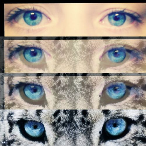 my Eyes Blue Love Gummersbach