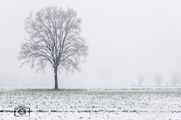 Stand Out From The Crowd Winter Nikon D7000 EyeEm Best Shots Snow ❄