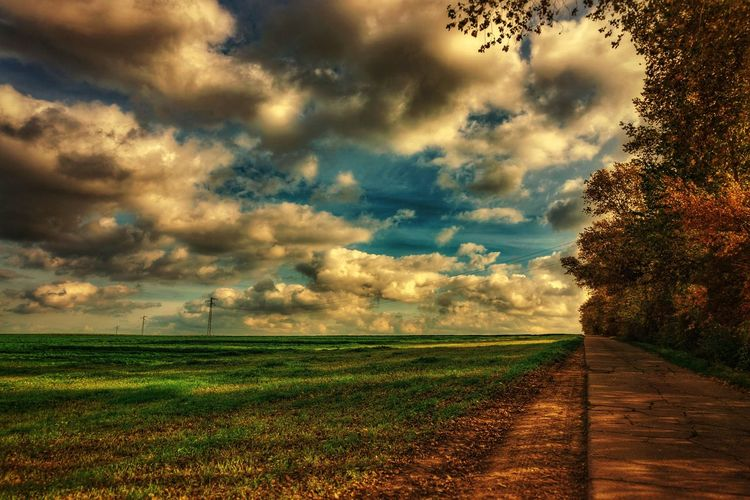 Germany Light Grass Countryside Powerpole Clouds Road Dramatic Travel Sonnenuntergang Shadows Schatten Feld Cloud Rural Fall Dawn Sun Agriculture Field Rural Scene Cloud - Sky Nature Landscape Sunset Scenics Beauty In Nature Outdoors Tree Sky Sunlight Day EyeEm Ready
