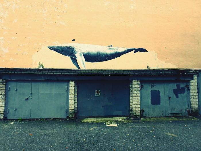 No People Urban Architecture Whale Urban Whale Graffiti Art Big City Life Best Of EyeEm Fine Art Photography The Magic Mission BIG CITY DREAMS Saint Petersburg Fifty Shades Of Yellow St.Peterburg Yards Streetphotography Russia Urban Ocean Garage