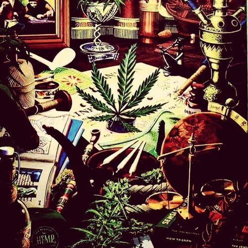 3Joint Marijuana Style Botta Money 😚