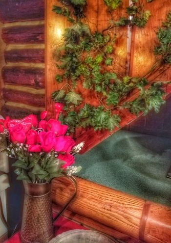 Flower Indoors  Red Freshness No People Nature Close-up Day Wood - Material Roses Vase Of Flowers