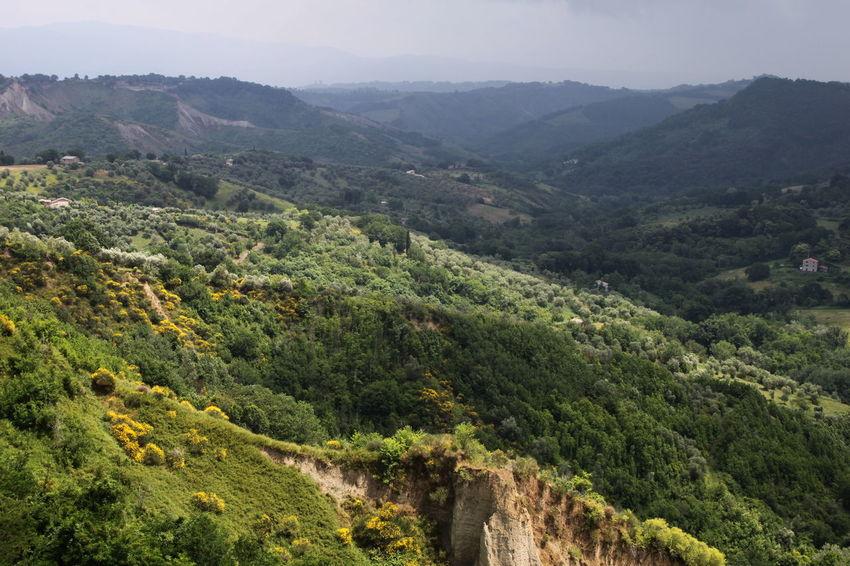 Beauty In Nature Civita Di Bagnoregio Day Elevated View Green Color Italy Landscape Lazio Mountain Range No People Outdoors Remote Tree Valley