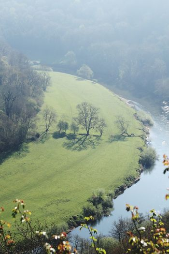 Symonds Yat Tree Nature Landscape Green Color Water Beauty In Nature Outdoors No People Scenics Forest Day Mountain Sky EyeEm Nature Lover EyeEm Best Shots EyeEm Best Shots - Nature From Above