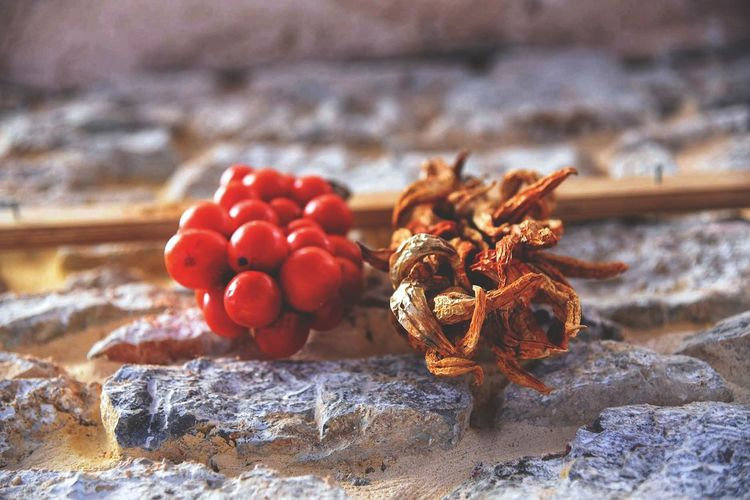 Drying Tomatoes Peppers Food And Drink Freshness Nature Red Food Healthy Eating Building Exterior Village Life Culture And Tradition Low Angle View Dried Food Hanging Lookingup Tomato From My Point Of View - Pyrgi Chios Greece Food Stories