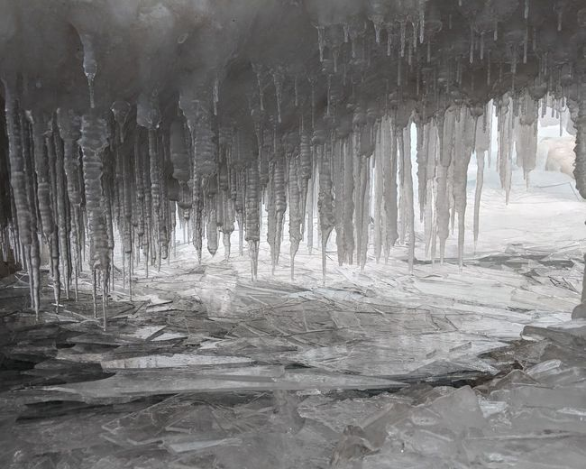 icicles and