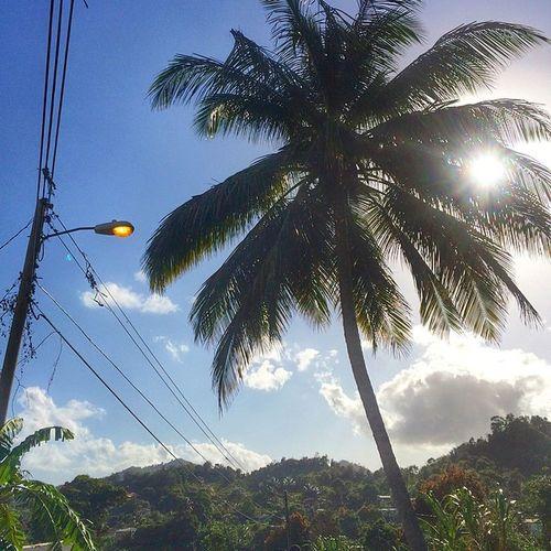 Ilivewhereyouvacation Nature Westindies_landscape Instagram_hub Islandlivity Ig_caribbean Islandlife Awesome_captures Ourbestshots All_shots Rsa_light Sky_captures Skyshooters Iphone5s Instagram