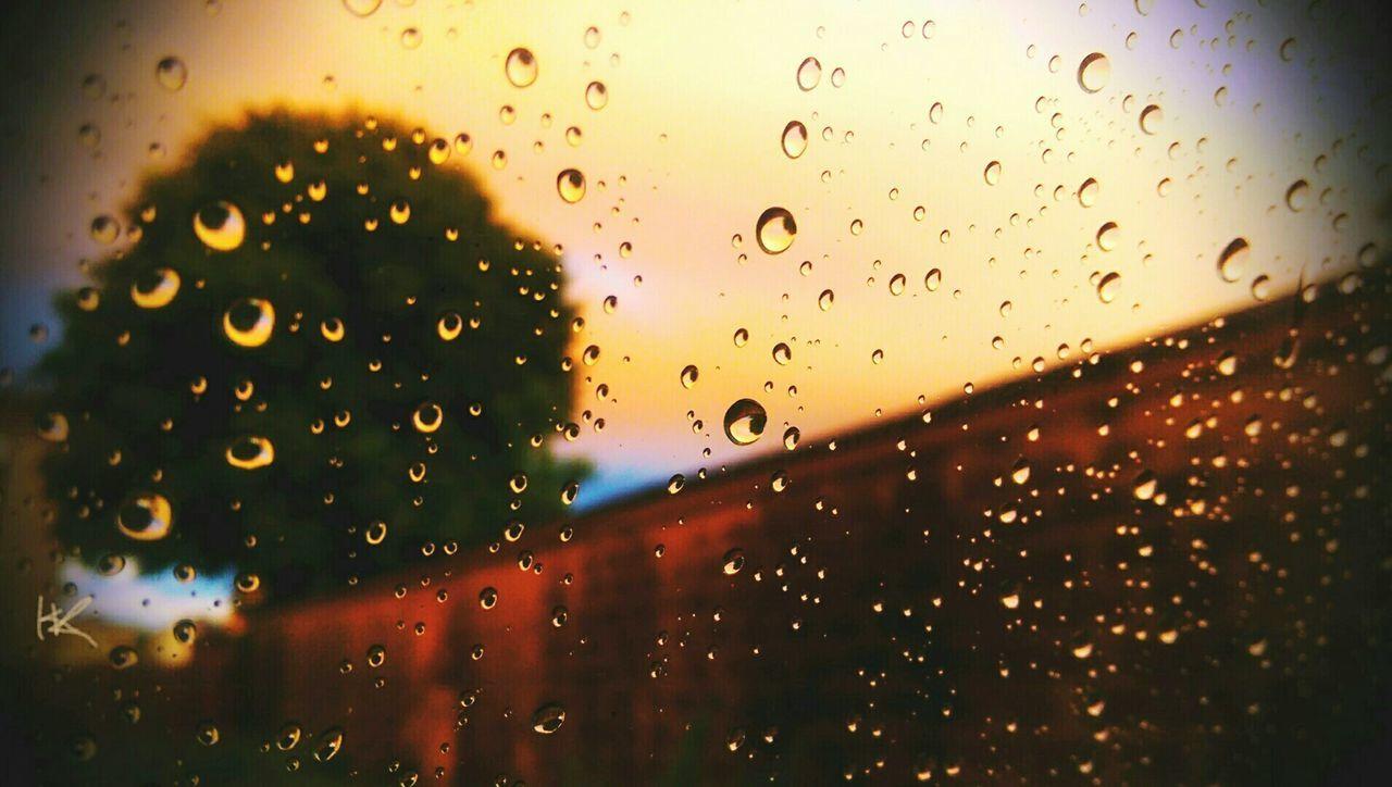 Raindrops On Window On Rainy Day