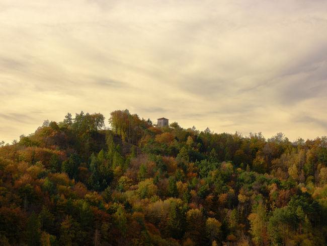 Come un quadro Autumn Paint Beauty In Nature Cloud - Sky Day Growth Landscape Nature No People Outdoors Plant Scenics Sky Tree