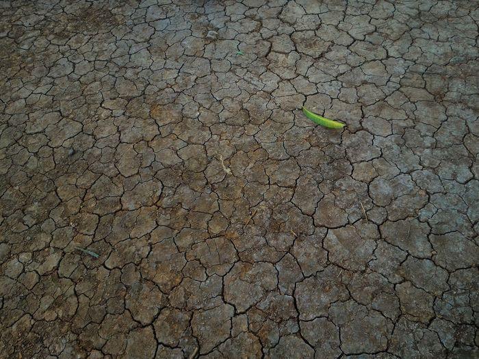 Dry cracking