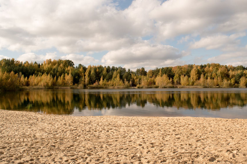 Lake Water Beach Forest Autumn
