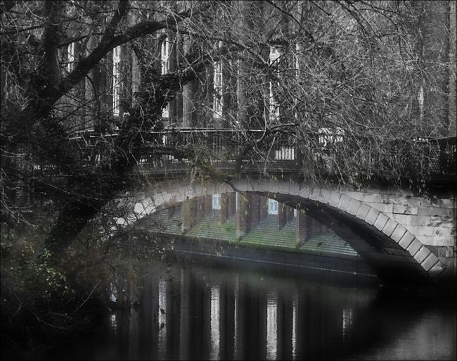 Bridgeporn Riverside Photography Romantic Scenery Artistic Edit Playing With Filters Nikonphotographer Norwich Tree_collection  Taken From A Bridge To Another