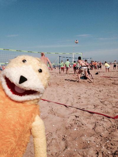 Flat Eric Tylösand Beach Volleyball