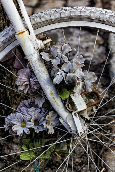 memorial for bicyclist Memorial For Bicyclist Mourning Still Life Street Art Street Memorial