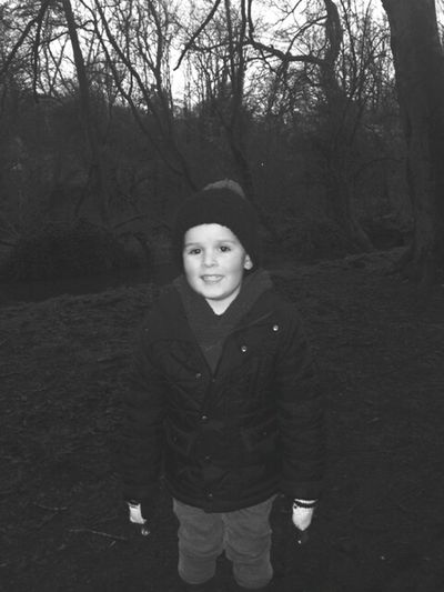 Wintery A Walk In The Woods Son