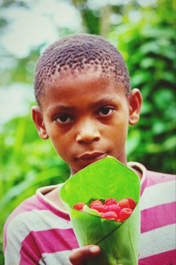 Picturing Individuality S. Tomé Africa Fruits Helping Mom Showcase: November kid selling strawberries to help his mother