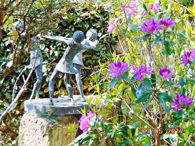 St Agnes Outdoors Nature Growth Day No People Beauty In Nature Sculpture Plant Springtime Flower Purple