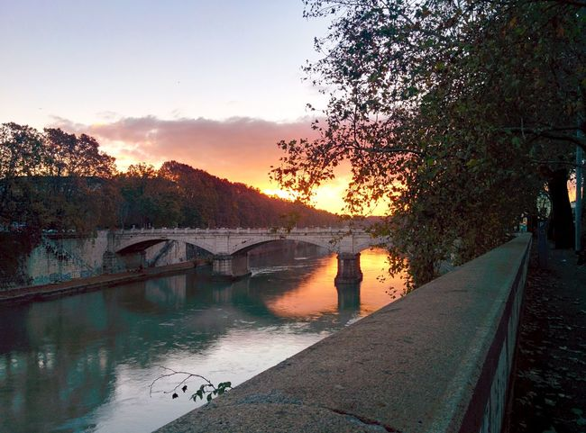 Ponte Mazzini, Rome, Italy, 6AM. Architecture Beauty In Nature Bridge - Man Made Structure Built Structure Calm Clouds Clouds And Sky Clouds And Water Dawn Day Italy Nature No People Outdoors Reflection River Riverside Rome Rome Italy Sky Sun Sunset Tree Trees Water