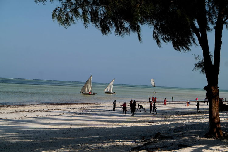 Sea Water Beach Land Tree Real People Sky Nature Group Of People Plant Sand Beauty In Nature Scenics - Nature Horizon Over Water Horizon Leisure Activity Lifestyles Tanzania Zanzibar Zanzibar_Tanzania Zanzibar Africa Africa Beachphotography Beach Photography Beachlife Beachlovers Nature_collection Naturelovers Landscape_Collection The Week on EyeEm EyeEm Best Shots EyeEm Selects EyeEm Nature Lover EyeEm Gallery Holiday Tropical Climate Tropical Paradise Sansibar Outdoors Blue Sky Blue Sea Playing Football Sailing Boats