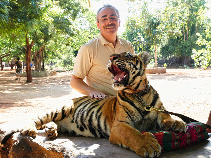 Smiling man sitting with tiger outdoors