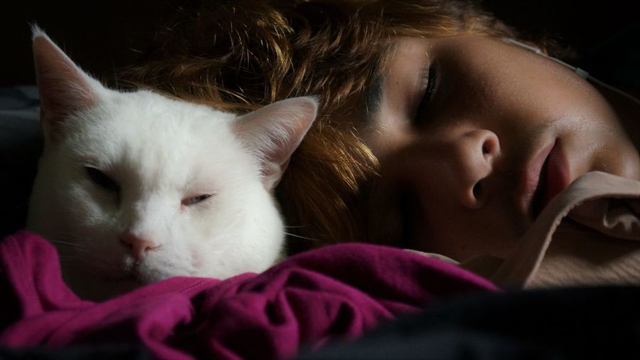 Best Friends Friends Asleep Black Background Child Childhood Close-up Domestic Domestic Animals Eyes Closed  Headshot Indoors  Innocence Mammal One Animal One Person Pets Portrait Relaxation Sleeping Teen Teenager Togetherness