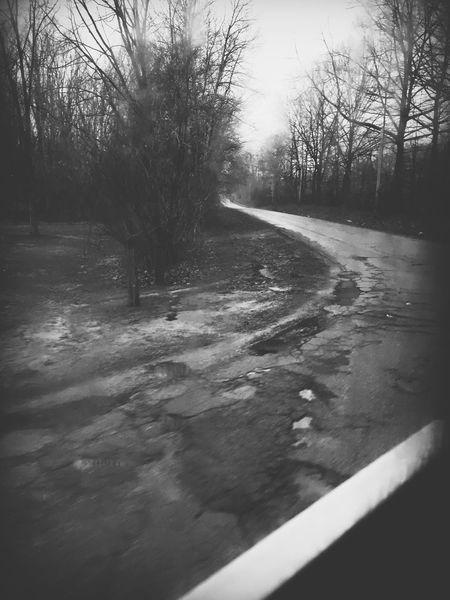 Twisty road Potholes Roadside Michigan, USA Black & White