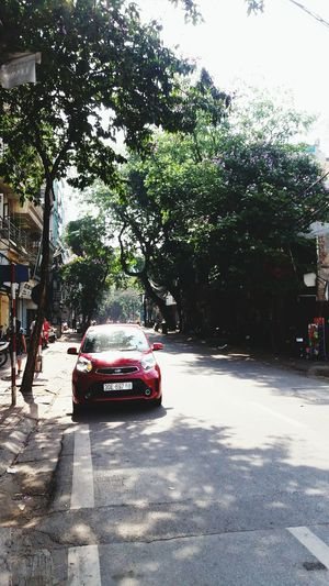 Car Tree Day Outdoors Nature Sky Street Walkingstreet Lifestyles Morning Hanoi Vietnam  Hanoi, Vietnam Sundaymorning Sunday Sunshine ☀