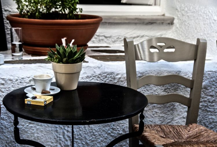 Potted Plant With Coffee Cup On Table By Chair