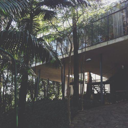 Architecture House São Paulo