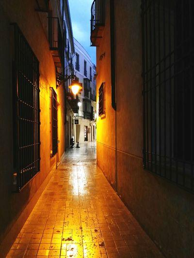 Mobilegrapher Mobilephoto Photo Of The Day Huaweig8 Mobilephotography Color Photography Mobileart Malaga Andalucía Spain ✈️🇪🇸 Night Lifestyle Fresh On Eyeem